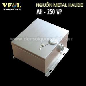 Nguon Metal Halide 250W Chong Nuoc 300x300 - NGUỒN METAL HALIDE 250W CHỐNG NƯỚC