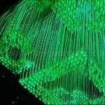 Den chum soi quang mau 5 2 150x150 - ĐÈN CHÙM SỢI QUANG MẪU 5