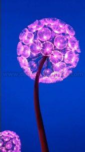 Den hoa bo cong anh 9 169x300 - HÌNH ẢNH ĐÈN SÂN VƯỜN, TRANG TRÍ NGOÀI TRỜI, TIỂU CẢNH