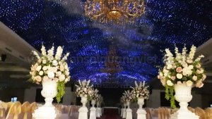 Tran sao Trung tam tiec cuoi Hai Dang 4 300x169 - HÌNH ẢNH TRẦN SAO NHÂN TẠO