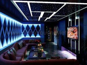 Tran sao nhan tao karaoke 1 300x225 - HÌNH ẢNH TRẦN SAO NHÂN TẠO