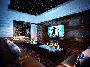Tran sao nhan tao karaoke 3 300x225 - HÌNH ẢNH TRẦN SAO NHÂN TẠO