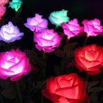 Den hoa hong 2 150x150 - ĐÈN CÂY HOA HỒNG