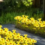 Den hoa huong duong 11 150x150 - ĐÈN CÂY HOA HƯỚNG DƯƠNG