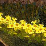 Den hoa huong duong 5 150x150 - ĐÈN CÂY HOA HƯỚNG DƯƠNG